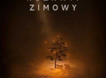 Rozkwit Zimowy – projekt studentów Warszawskiej Szkoły Filmowej