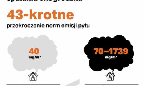 Ile jest eko w ekogroszku? Emisje szkodliwych pyłów przekroczone 40-krotnie!